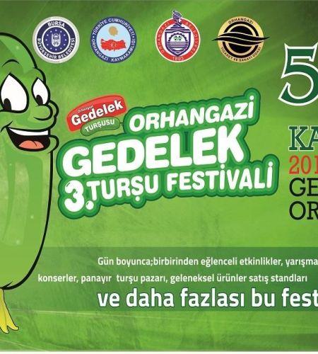 Orhangazi Gedelek Turşu Festivali 2016