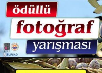 Gemlik ve Zeytin Temalı Fotoğraf Yarışması